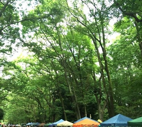 森の手づくり市 糺の森